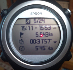 Running20140524